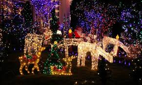 zoo lights memphis 2017 events zoo lights at the memphis zoo