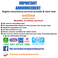 nagina international nagina consultancy services consulting agency lahore pakistan