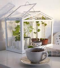 apartment herb garden an easy indoor herb garden idea perfect for