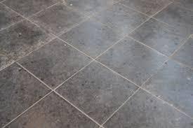 what is the best steam cleaner for linoleum floors carpet vidalondon