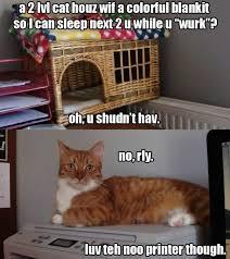 Sleeping Cat Meme - my cat likes sleeping on my desk meme guy