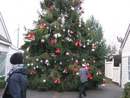 pierce county wants you to recycle your christmas tree