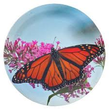 monarch butterfly 5273 paper plates paper gifts presents gift