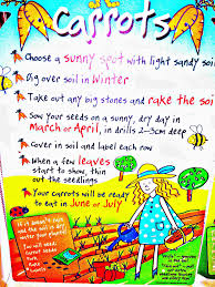 growing vegetables with children kidsinthegarden