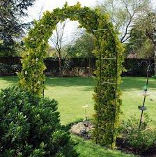 metal garden arch frame climbing plants roses archway sweeping