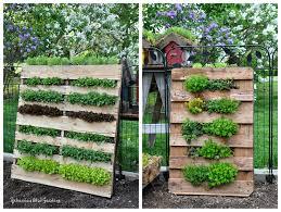 rebecca u0027s bird gardens blog diy vertical pallet garden