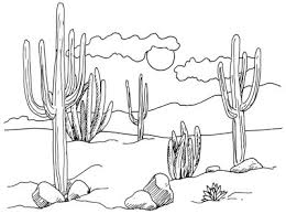 how to draw desert cacti howstuffworks