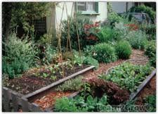 vegetable garden small space make room for vegetable garden