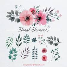 free flowers watercolor flowers vectors photos and psd files free