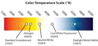 light bulb color spectrum ray frequently asked questions