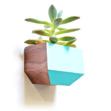 Wall Planters Indoor by 53 Best Gifts For Indoors Images On Pinterest Vertical