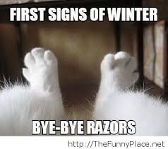 Funny Winter Memes - funniest winter sign thefunnyplace