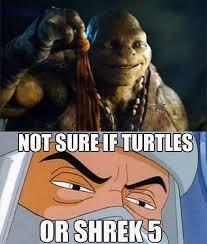 Shrek Meme - not sure if turtles or shrek 5 funny memes pinterest shrek