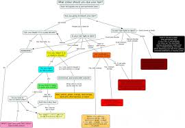 which colour should you dye your hair flowchart forums
