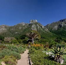 Kirstenbosch National Botanical Garden Kirstenbosch National Botanical Garden Cape Town City Pass
