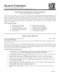 Best Format Of Resume resume template professional format of best examples for your