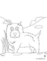 chow chow coloring pages hellokids com