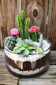small family garden ideas planting a simple cacti garden u2013 a beautiful mess