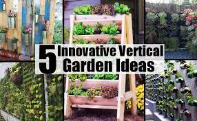 5 innovative vertical garden ideas to make your garden look