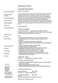 executive resume word functional executive template free