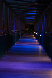 cool light up things 365 things to do in memphis 84 walk across the light up bridge i