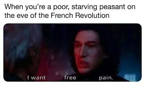 Meme French - esoteric french revolution memes home facebook