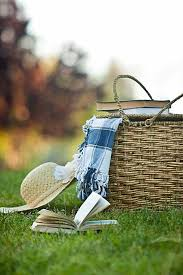 best picnic basket the best picnic baskets on the web reviewed foodal