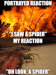 I Saw A Spider Meme - warning contains spiders not suitable for arachnophobians imgflip