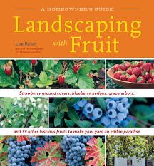 landscaping with fruit strawberry ground covers blueberry hedges