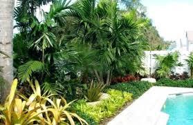 Tropical Gardening Ideas Tropical Pool Gardening Ideas Ipwn Modern Gardening