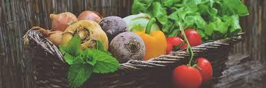 raw food treatment for cancer alternative cancer treatments
