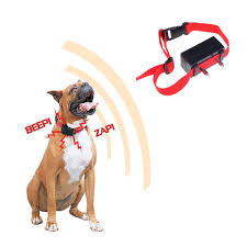 How To Train Dog To Stop Barking Compare Prices On Electric Dog Collars Online Shopping Buy Low