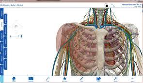 Human Anatomy Atlas Visible Body Human Anatomy Atlas 3 0 1 Pl Identi