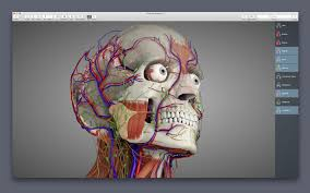 essential anatomy 3 apk essential anatomy 5 5 0 mac torrents