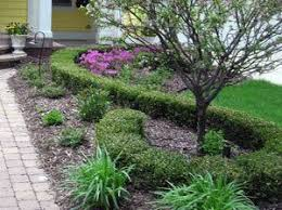 Landscaping Ideas For Front Yards 405 Best Front Yard Landscaping Ideas Images On Pinterest