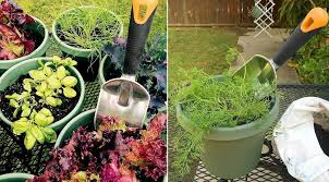 Diy Vertical Herb Garden Fiskars Diy Freestanding Vertical Herb Garden Privacy Screen