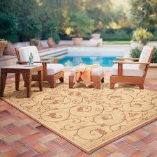 Xl Outdoor Rugs Outdoor Rugs For Patios Jute Rug 8 Tangier Outdoor Rug