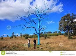 blue tree in park with stock photo image 32592372