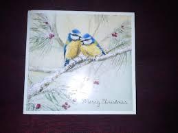 bird nerd part 4 christmas cards wild south