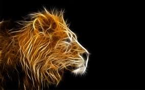 imagenes variadas en 3d 3d lion imagenes wallpapers variados fondos hd 3640