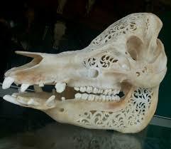 bali organic arts pig skull carving
