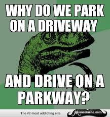 Raptor Memes - 595 best thinking green dino images on pinterest ha ha funny