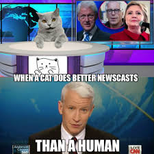 Anderson Cooper Meme - the truth factory on twitter more truth cat memes yay it