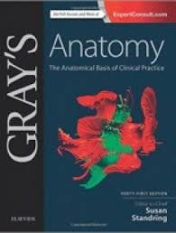 Study Anatomy And Physiology Online Gray U0027s Anatomy The Anatomical Basis Of Clinical Practice 41e Pdf