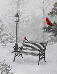 Park Bench Scene Raz 24 Inch Twinkling Led Lighted Cardinal In Park Scene Print On