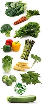 rabbit food safe foods suitable for rabbits which fruit and vegetables are