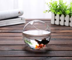 Succulent Kits by Popular Fish Aquarium Kits Buy Cheap Fish Aquarium Kits Lots From