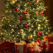 decorated trees with tree decorations on home