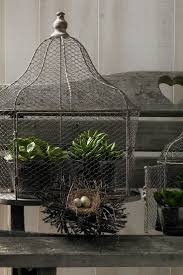 home interior bird cage 36 best bird cages images on pinterest bird cages bird houses
