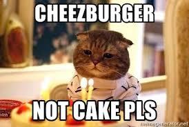 Cheezburger Meme Creator - cheezburger not cake pls birthday cat meme generator